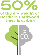 50 percent of the dry weight of Northern Hardwood trees is carbon