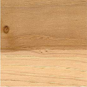 Northern hardwoods hickory
